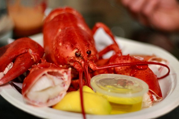 Lobster e1345728053351 50 Foods to Try Before you Die